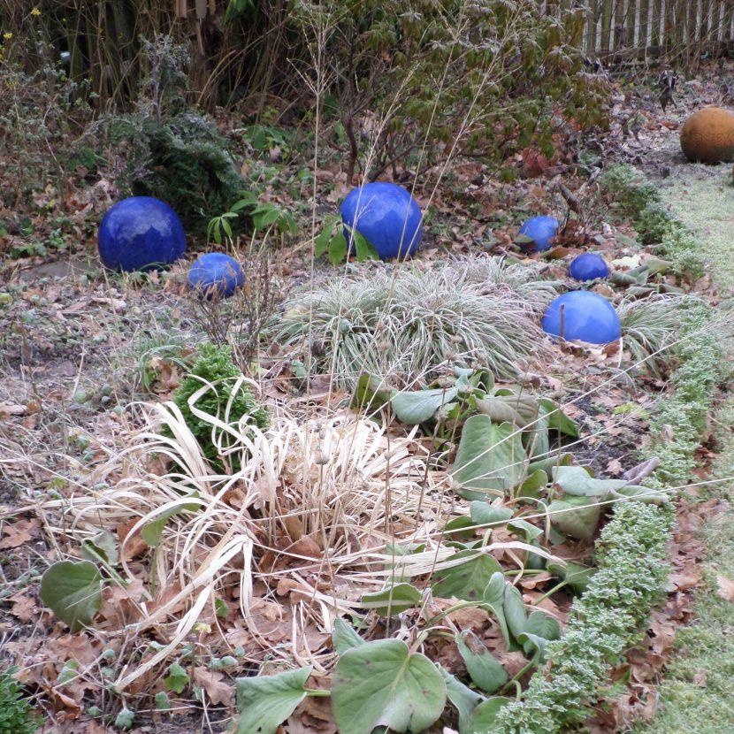 Pfeifengras im Winter